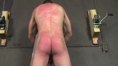 tomas-whipping boy part 4